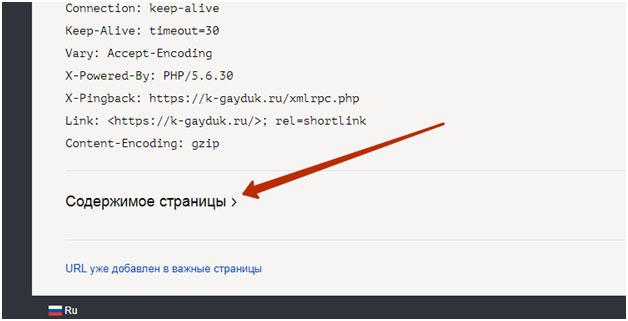 содержимое страницы в Яндекс.Вебмастере